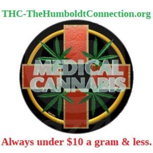 THC-TheHumboldtConnection.org